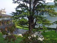 Oltre-il-Giardino-_Orticolario-2017-3