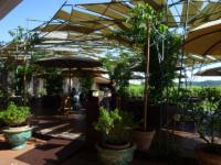 OLG-25-giugno-vivaio-e-giardino-Mates-17