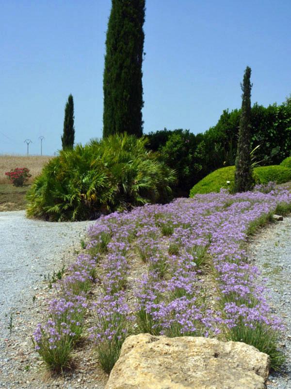 OLG-25-giugno-vivaio-e-giardino-Mates-2