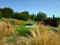 OLG-25-giugno-vivaio-e-giardino-Mates-4
