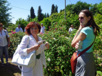 Oltre-il-Giardino-19-maggio-roseto-persolino-2