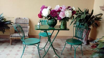 Oltre-il-Giardino-fioritura-peonie-1