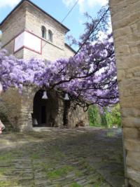 OltreIlGiardino-17-aprile-tesori-verdi-12