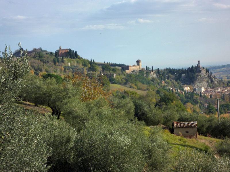OltreIlGiardino-Parco-regionale-Vena-del-Gesso-1