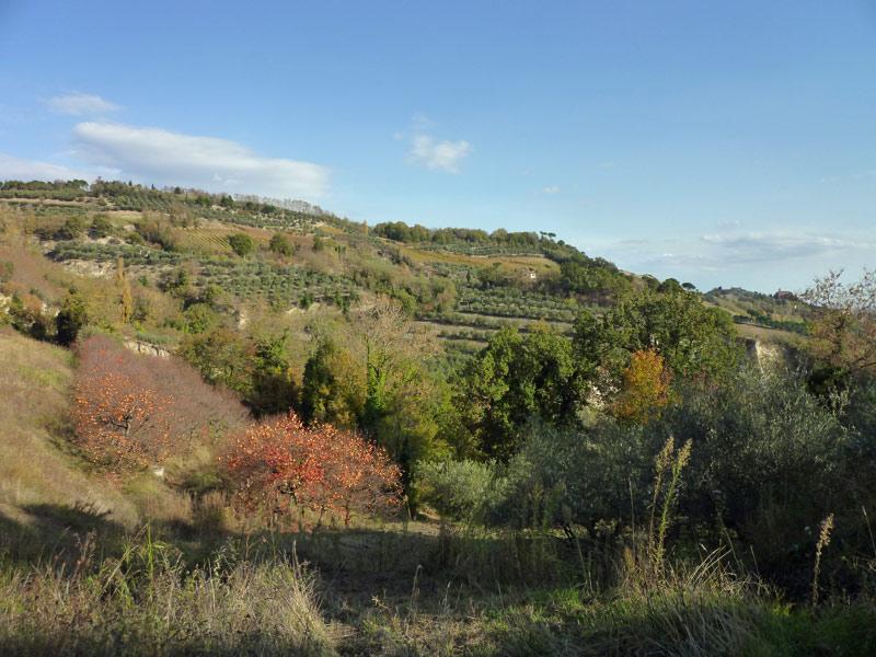 OltreIlGiardino-Parco-regionale-Vena-del-Gesso-2