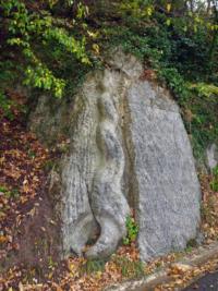 OltreIlGiardino-Parco-regionale-Vena-del-Gesso-20