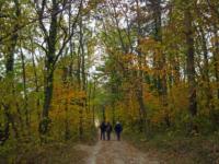OltreIlGiardino-Parco-regionale-Vena-del-Gesso-5
