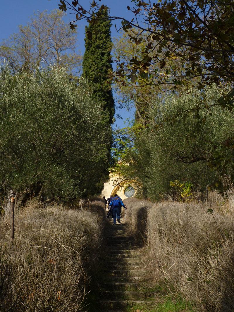 OltreIlGiardino-Parco-regionale-Vena-del-Gesso-6