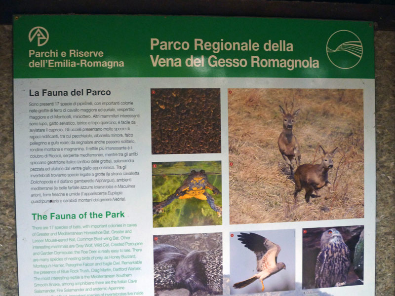 OltreIlGiardino-Parco-regionale-Vena-del-Gesso-8