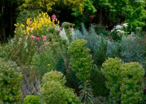 OltreIlGiardino-quale-giardino-oggi-in-europa
