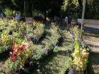 Orticolario-2018-Oltre-il-giardino-14
