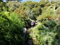 Orticolario-2018-Oltre-il-giardino-9