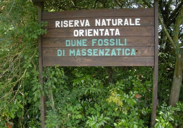 dune fossili